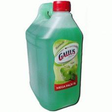 Gallus Pour Apfel – жидкое мыло для рук (яблоко), 5000 мл.